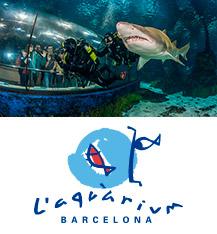 Entradas zoo aquarium de madrid parque de animales Entradas aquarium valencia